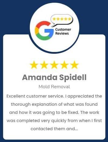 Waukesha Mold Review Amanda Spidell