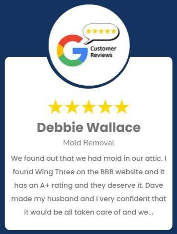 Waukesha Mold Review Debbie Wallace